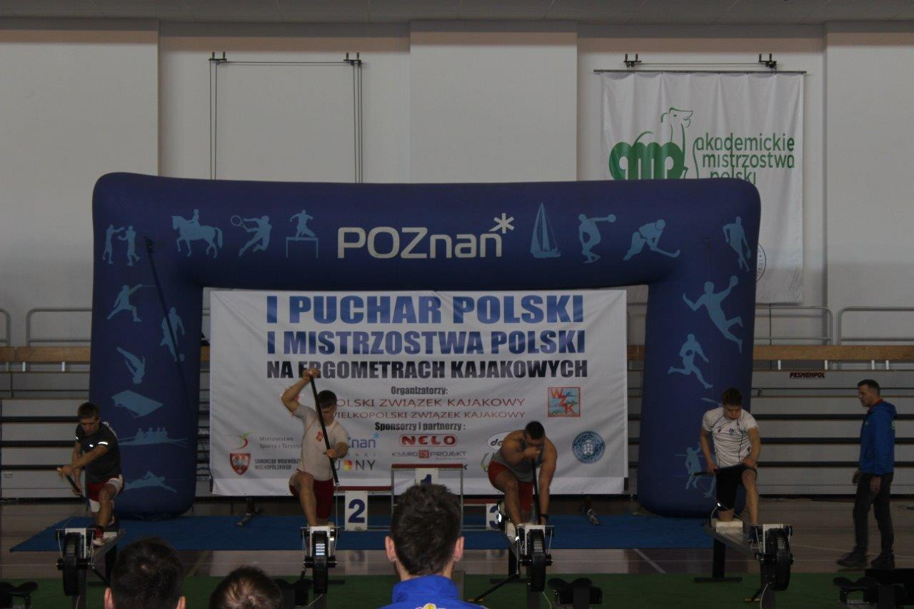 F-Kazimierz Seredyński (116)